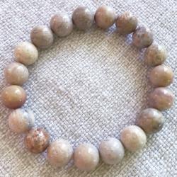 Ископаемый коралл браслет из камней